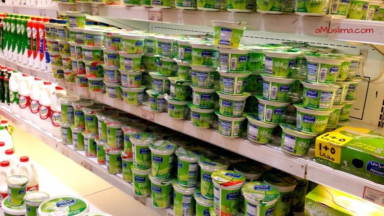 Types of Yogurt from Around the World